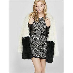 Express Mixed Lace and Fishnet Sheath Dress